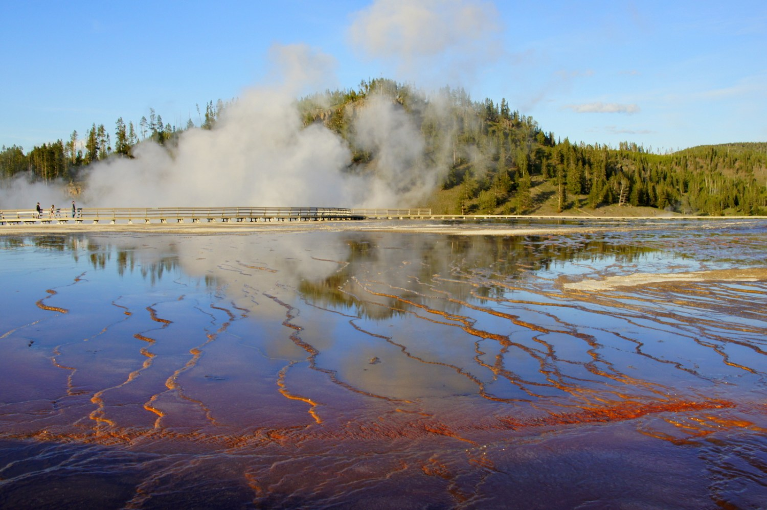 Algae brighten up a geyser pool in Yellowstone.