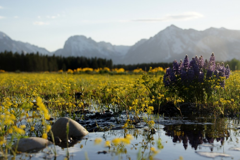 Totally unrelated to bike touring... Just a pretty shot from Grand Teton!