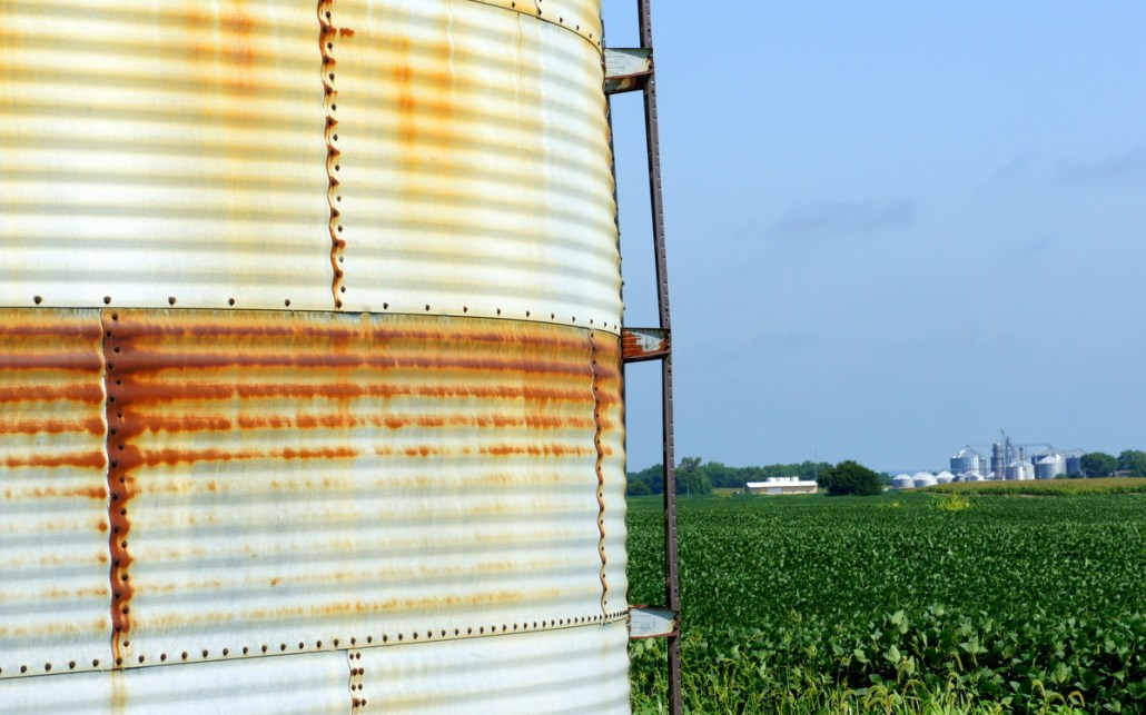 Corn fields and a rusty silo to hold the bounty.