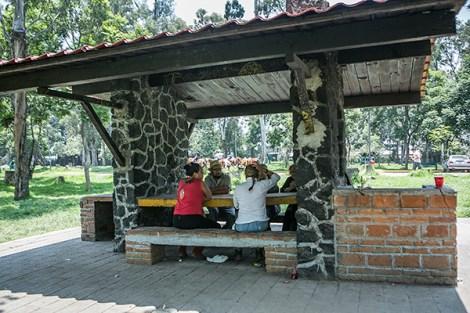 Turismo Xochimilco artesanias flores (5)