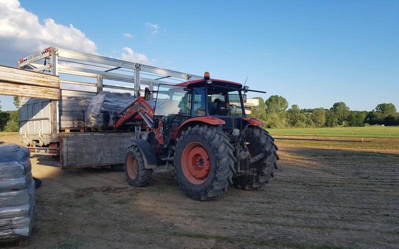Hazır Çim Üretimi