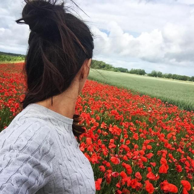 Fantastiska frger av vallmo och bleld p Gotland nu semesterhellip