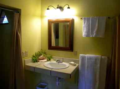a view of the sink and shower area in the cabana