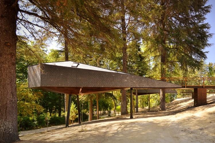 treesnakehouse_01