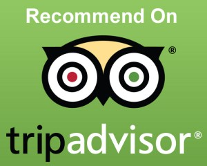 Transfers to Bansko on tripadvisor