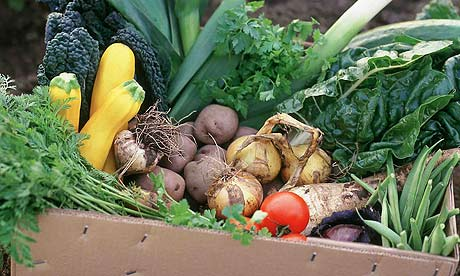 Box-of-organic-vegetables-001