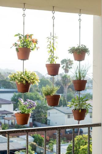 Decoração com plantas naturais – Dicas de profissional (8) dicas de decoração fotos