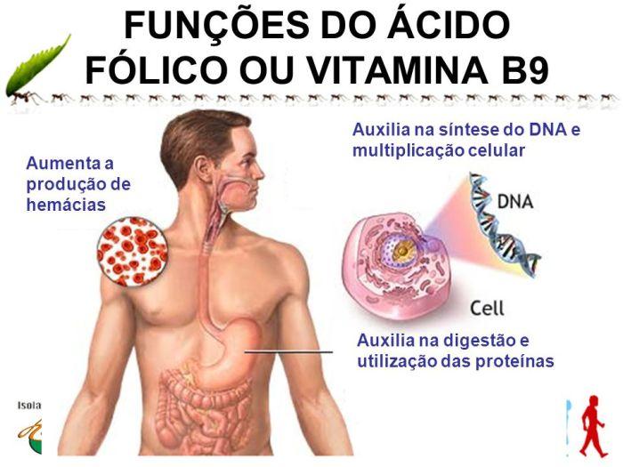 O que e o acido folico