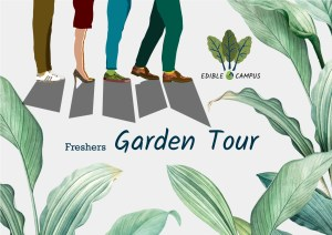 Freshers Community Garden Tour @ Meet at Gannochy Halls