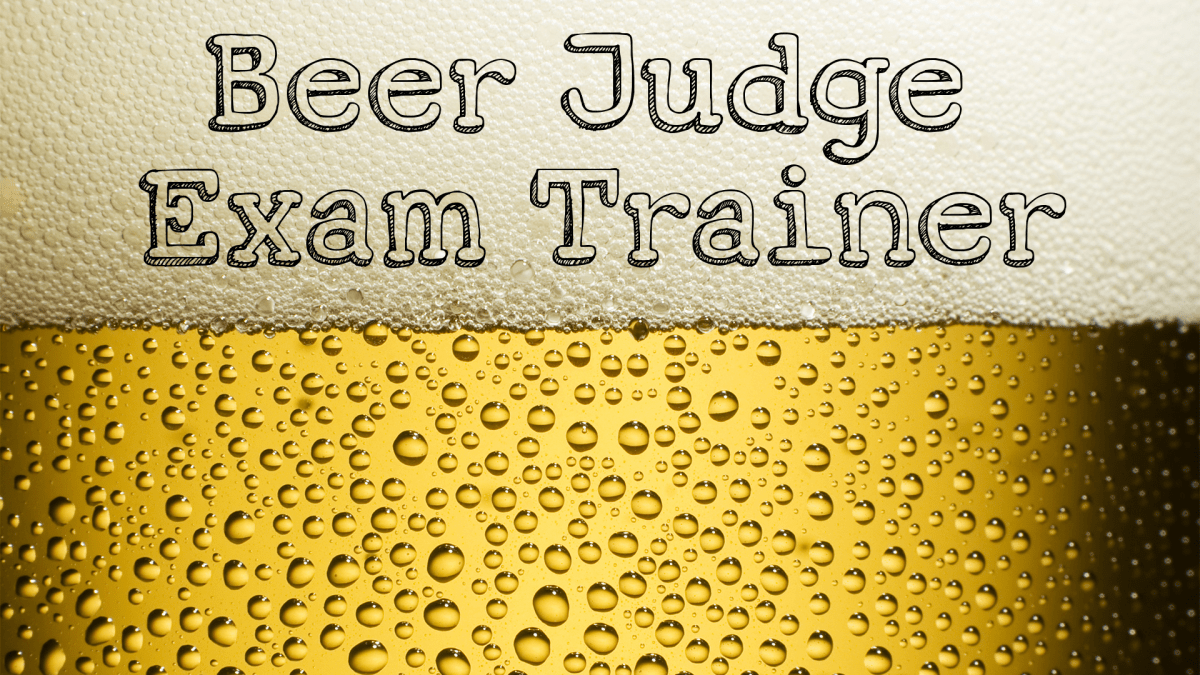 Hey Google, talk to the Beer Judge Exam Trainer!