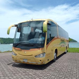 Bus 40 pax