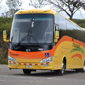 Bus 50 pax