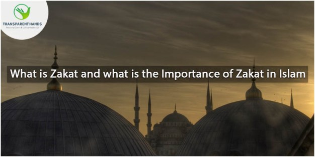 What is Zakat and What is the Importance of Zakat in Islam