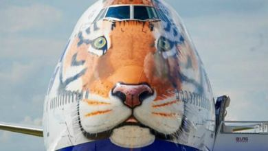 Photo of Aerolínea rusa plasma tigre siberiano en avión