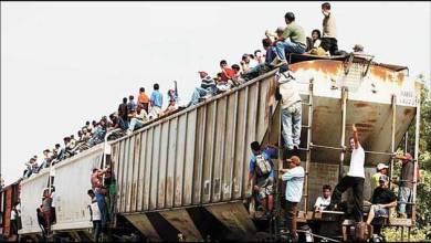 Photo of Aseguran que ha bajado el tránsito de migrantes por ferrocarril