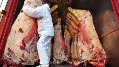 Photo of En México no se transporta la carne adecuadamente