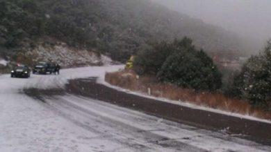 Photo of Afecta a autotransporte cierre de carreteras en Sonora y BC por nevadas