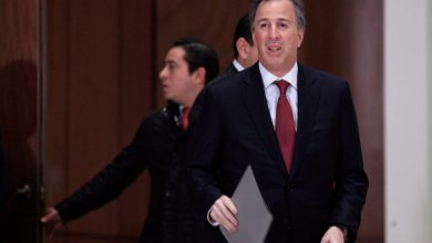 Photo of Meade no cree que transportistas suban precio de fletes