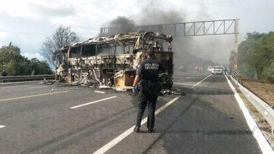 Photo of Canapat espera pago de 52 MDP del estado de Michoacán