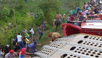 Photo of Rapiña quiebra a transportistas: CANACAR