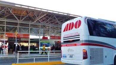 Photo of Terminales ADO en CDMX y Puebla serán centros de acopio