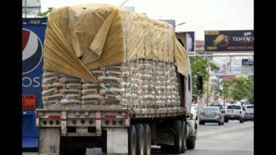 Photo of Transportistas chihuahuenses piden poner orden a pesos y dimensiones