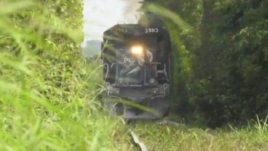 Photo of Tren Maya se enfrenta a reto de aceptación medioambiental