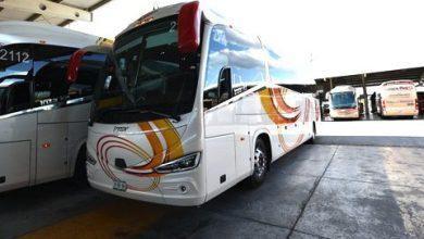 Photo of Flecha Amarilla y TTUR crecen flota con autobuses Scania