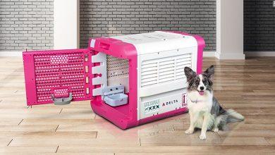 Photo of CarePod la solución para el transporte de mascotas