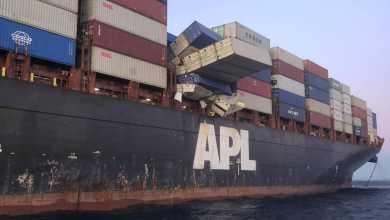 Photo of Caen contenedores de insumos médicos de buque de APL