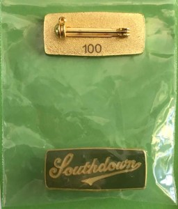 DPE01 Southdown badge #100