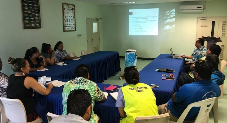 TraSeable presenting to the Samoan Fisheries Division