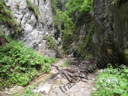 canionul-sapte-scari_13