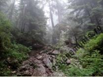 muntii-piatra-mare