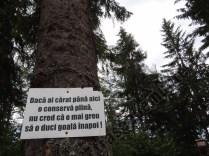 Mesaje ecologice_1