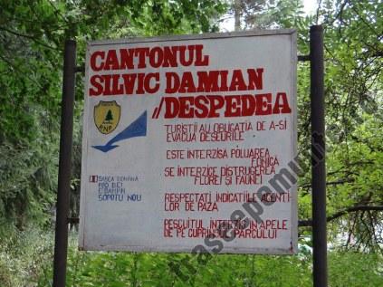 Cantonul Silvic Damian