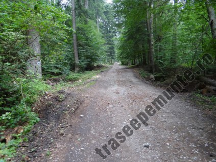 Drum Valea Urlatorii_