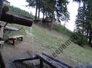cabana-curmatura_izvor