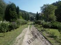 Cabana Valea Bei_gradina