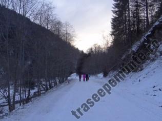 Drum Valea Dambovitei