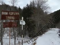 Drumul forestier Tamas
