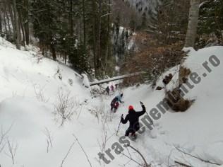 Valea Tamas_2