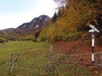 Valea Luncii - marcaj