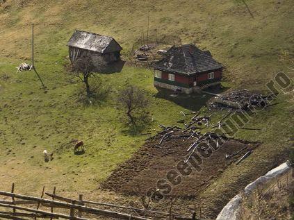 Gospodarie in satul Pestera