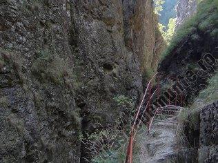 Canionul Valea lui Stan_scara_2