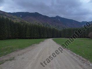 Drumul Valea Berii_2