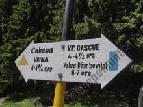 Marcaj in Valea Cuca