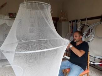 Trasimeno, insetti, il contrasto ai chironomidi passa attraverso una rete da pescaTrasimeno, insetti, il