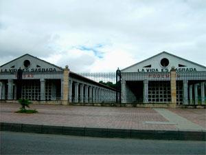 Columbarios del Cementerio Central de Bogotá Foto: Édgar Zúñiga Jr. http://entrelasartes.org/secciones/escuela/obras/beatriz_gonzales/vida-sagrada.html
