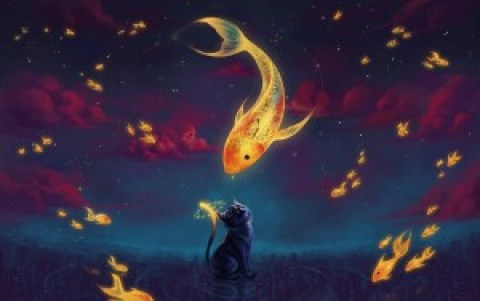 7027115-art-fantasy-goldfish-kitten-night-stars